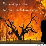 El negro futuro de los incendios