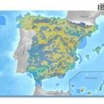 Nuevo espaldarazo del Supremo al Inventario de IBA de SEO/BirdLife