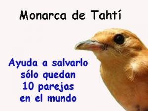 Salva al monarca de Tahití