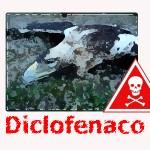 Más vale prevenir….que matar águilas con un antinflamatorio